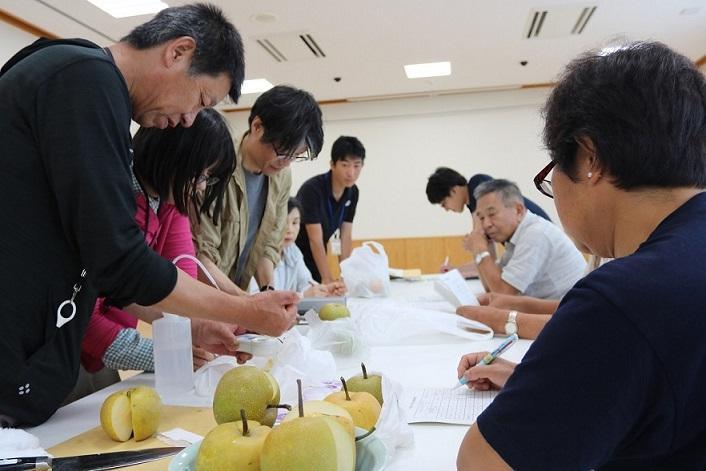 20180912神門梨糖度検査.JPG