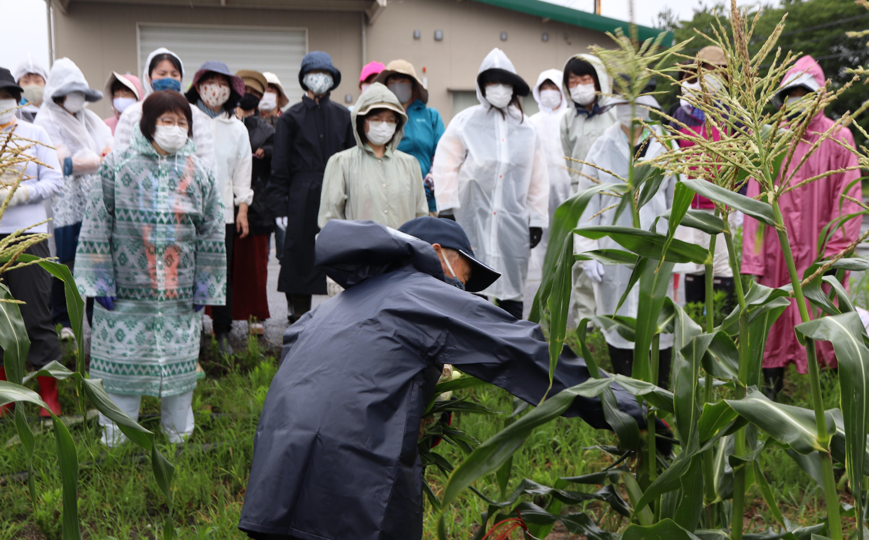 学生に収穫方法を説明する奥名さん.JPG