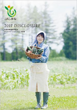 2017年版 ディスクロージャー誌