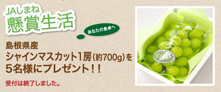 受付は終了しました。懸賞生活 7月のプレゼント「島根県産シャインマスカット1房(約700g)」