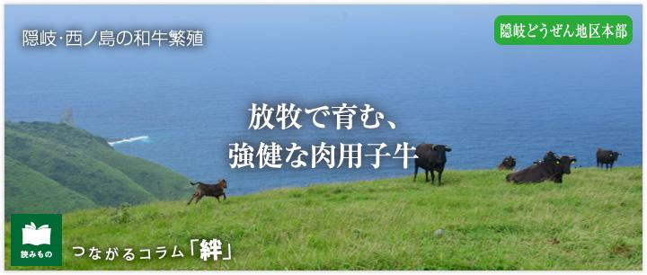 つながるコラム「絆」vol.9 放牧で育む、強健な肉用子牛