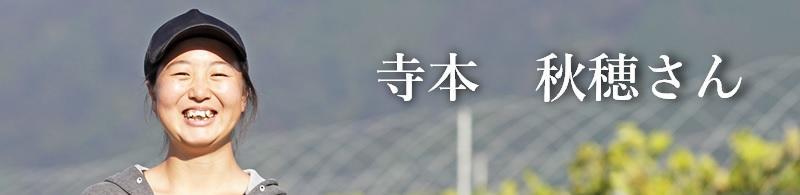 新聞広告_寺本秋穂さん①.jpg