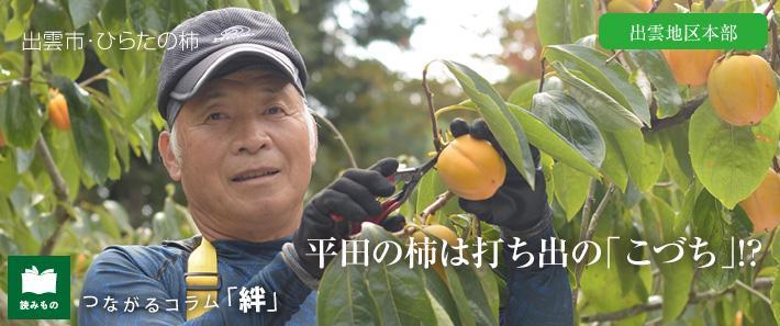 report46.jpg