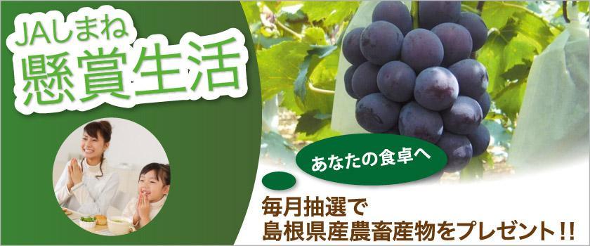 【懸賞生活】毎月抽選で島根県産農畜産物をプレゼント!!